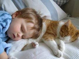 dormi.jpg